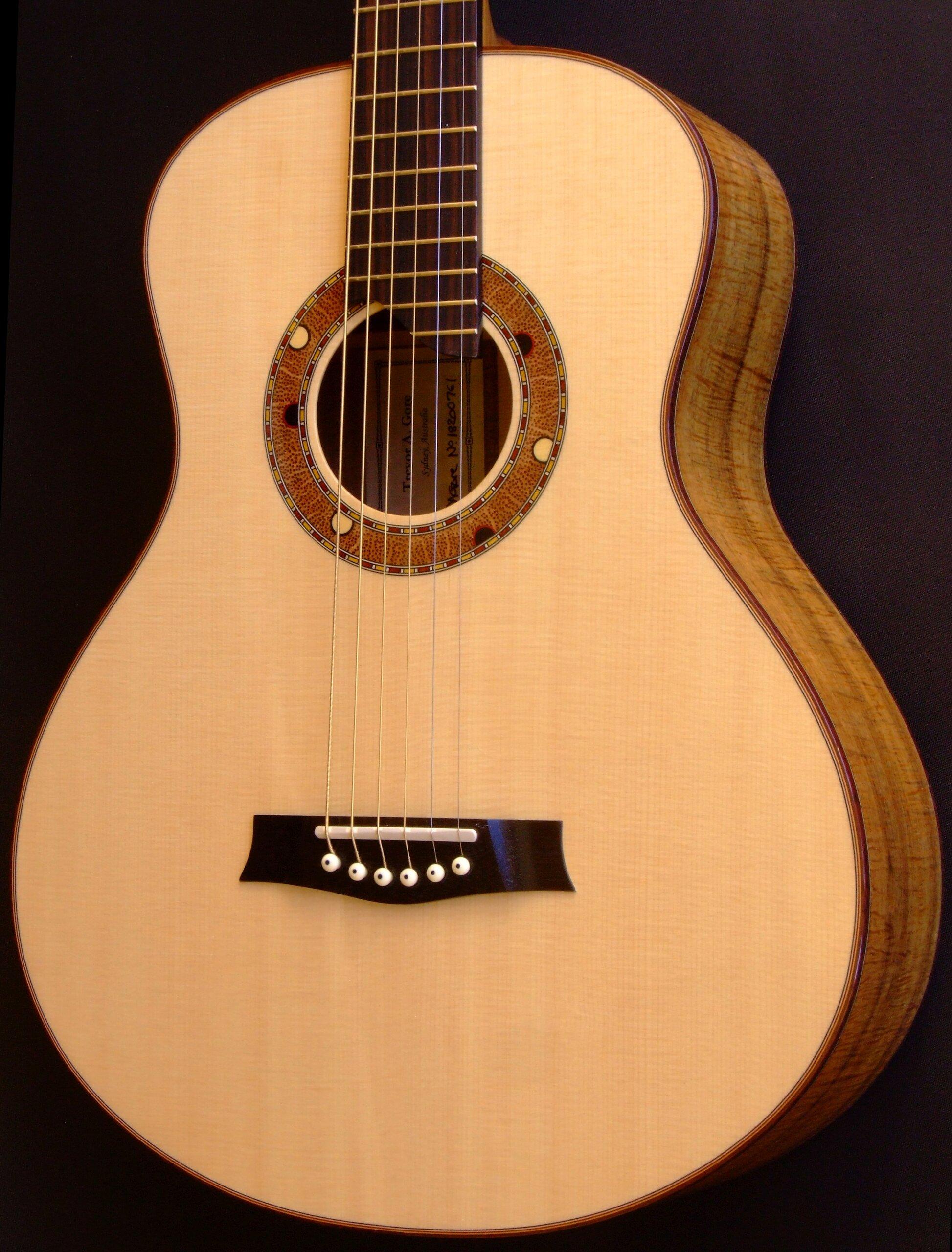 Guitar with medium retro body shape and Australiana decoration