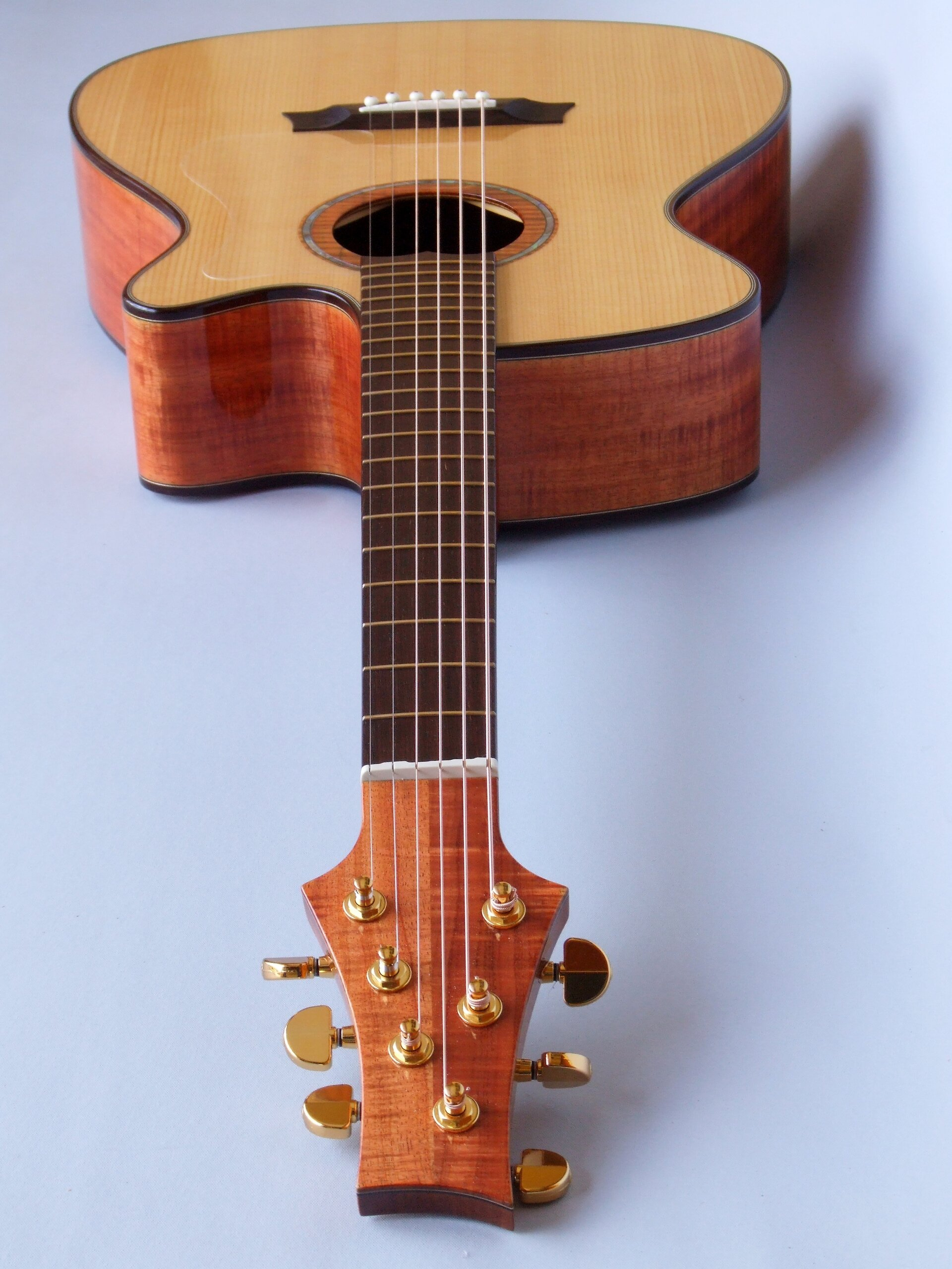 Looking down the neck of a blackwood guitar with rosewood binding