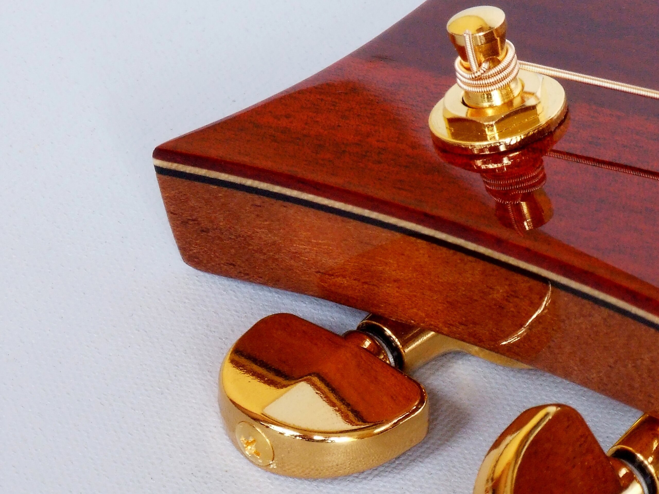 Detail of gold Gotoh SG 301 tuners