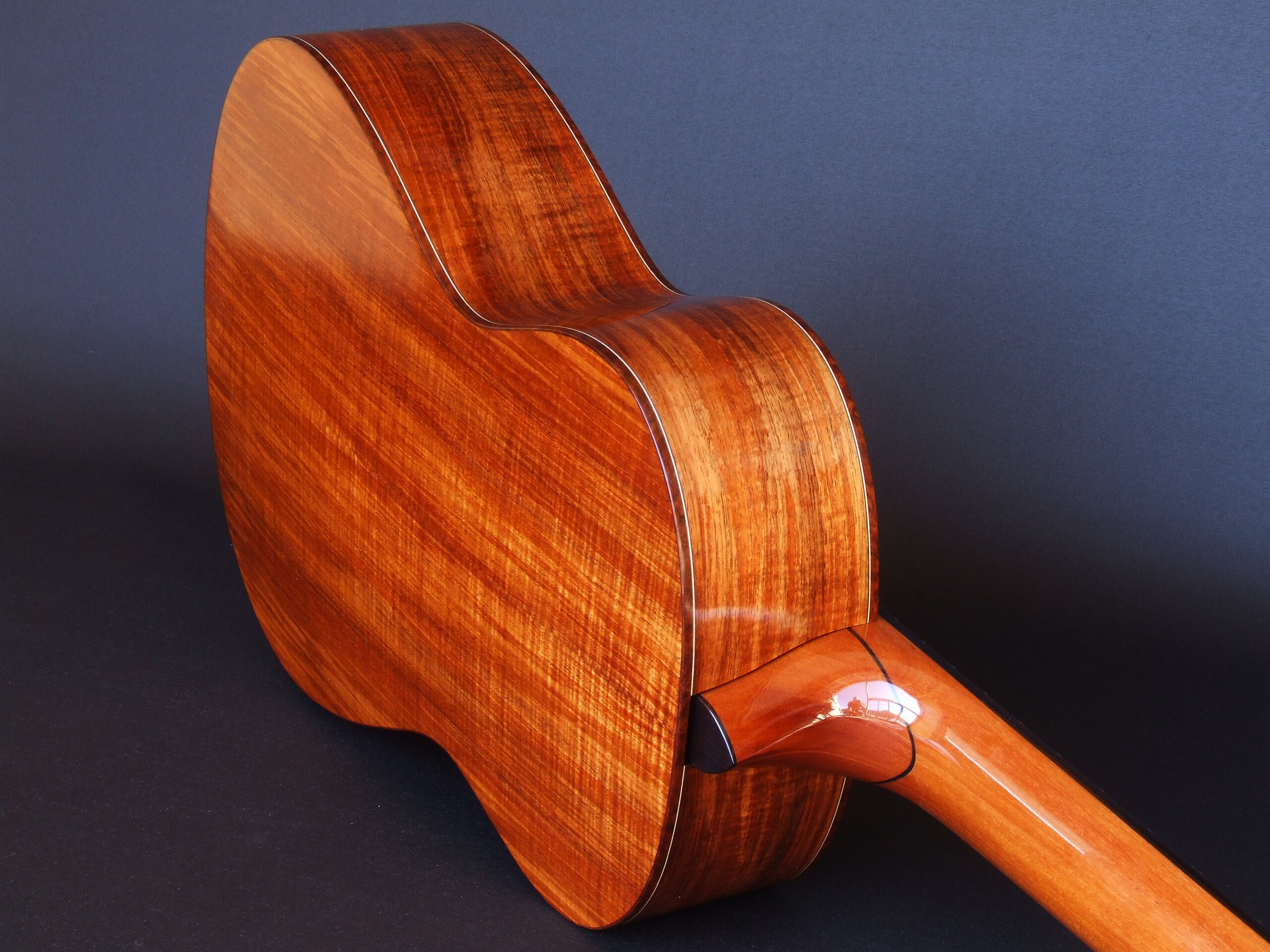 Back and sides of a Gore guitar in figured blackwood